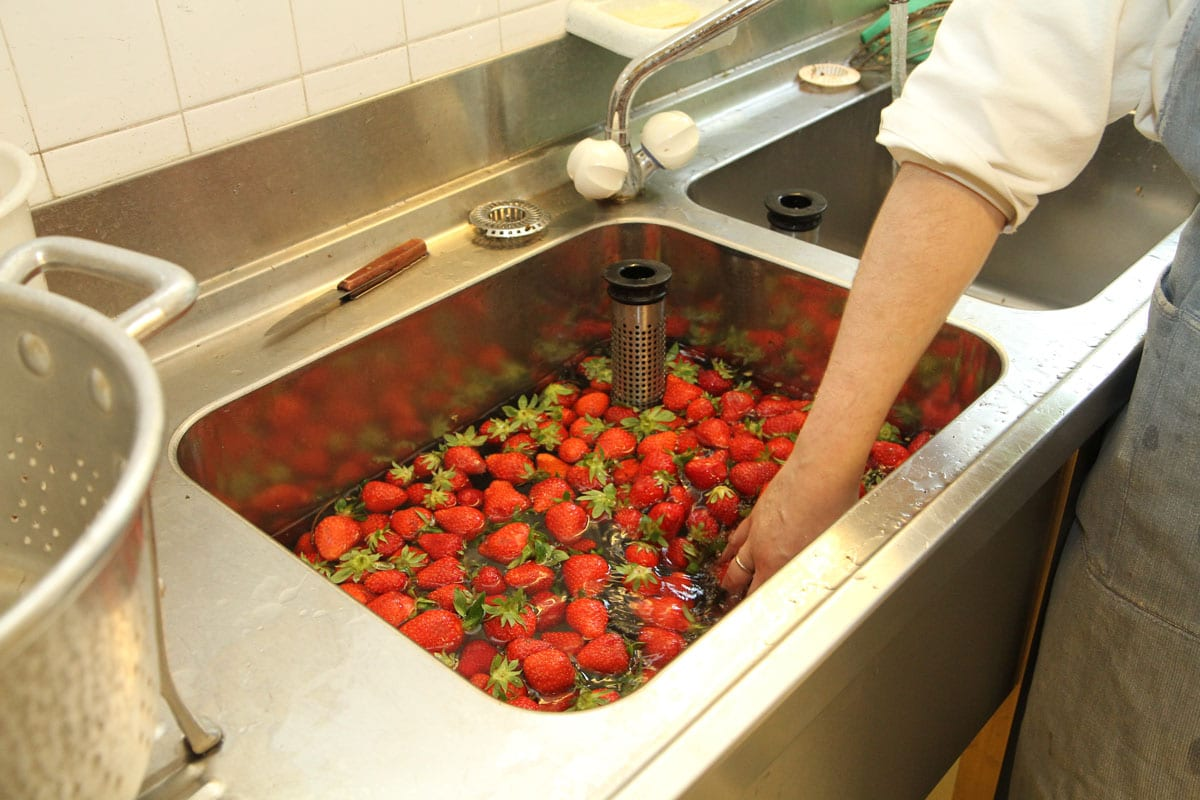 évier pour lavage des fraises
